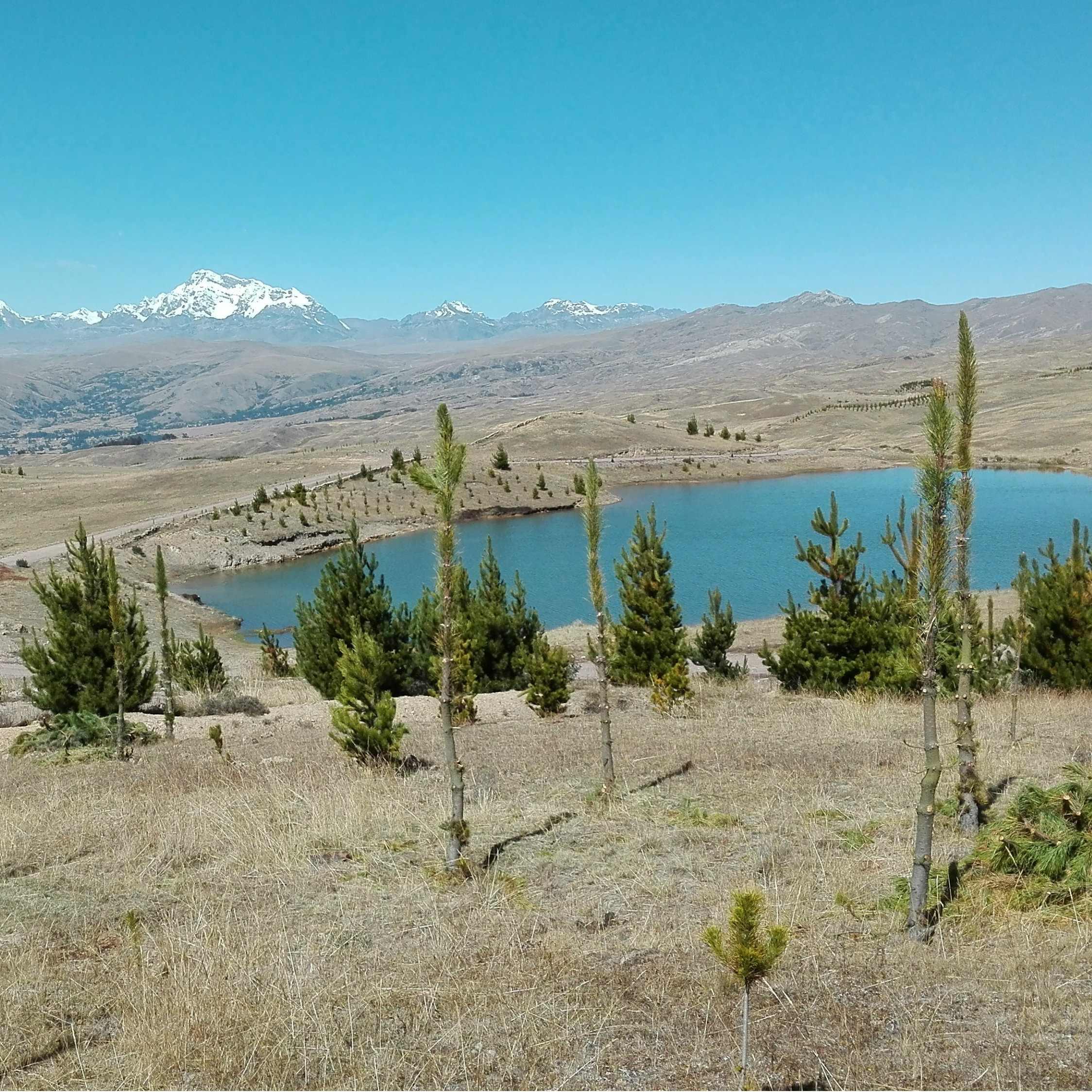 Reservorios Ccaijo